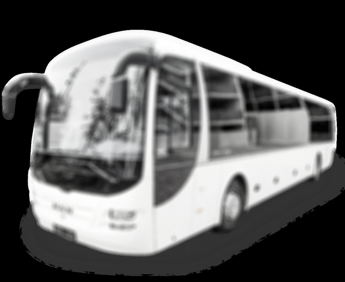 bus-fahrlehrer